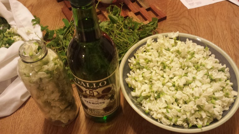 All the supplies you'll need to make black locust vermouth: bottle, alcohol and blossoms