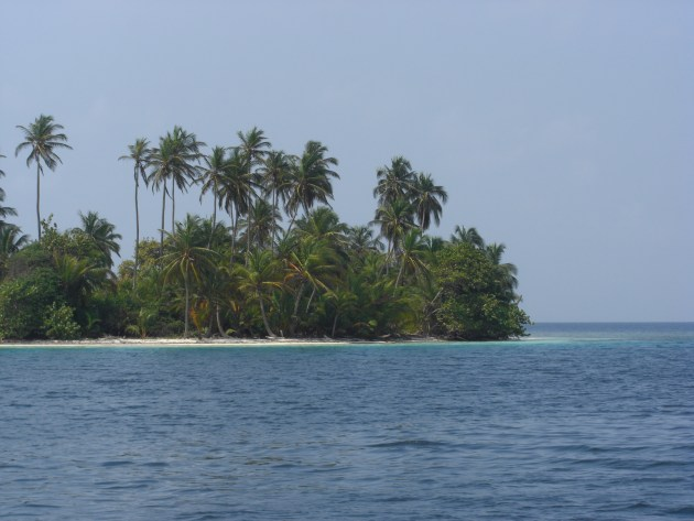 3-Palm islands
