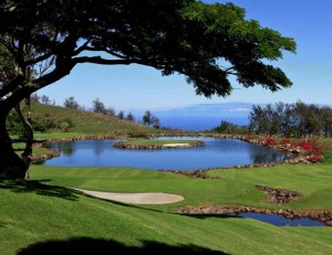 17th Tee at Big Island Country Club | http://www.spiritofgolfacademy.com