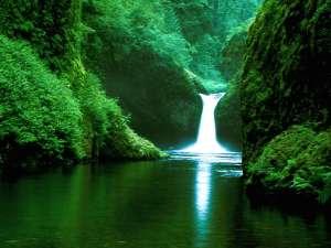 Eden paradise