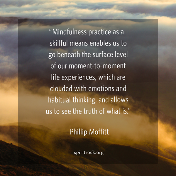 Dharma Wisdom Quotes   Spirit Rock   An Insight Meditation Center Phillip Moffitt Quote Meme
