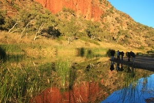 Journey to Clarity Glen Helen MacDonnell Ranges