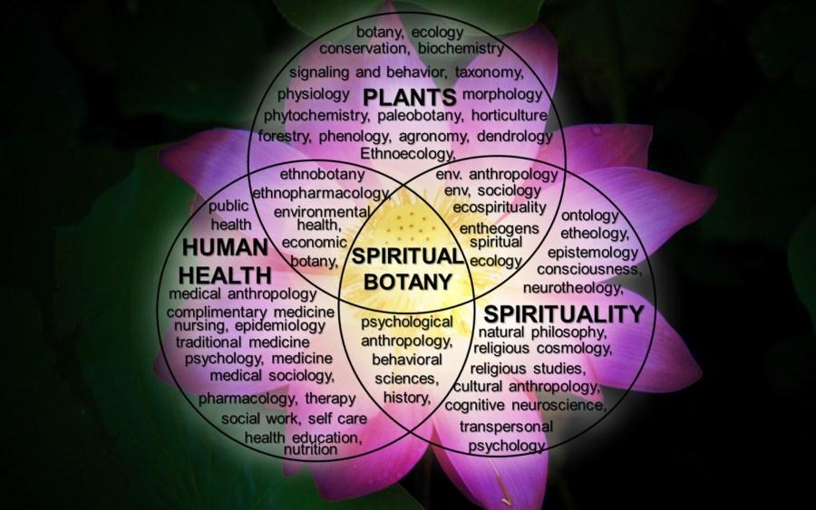 spiritualbotanyvenndiagram