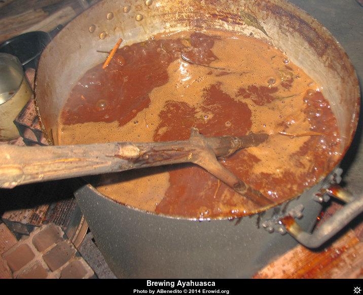 ayahuasca_brew_pot__i2014e0083_disp
