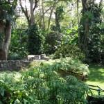 The garden at Las Farolas