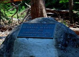 Bernard DeVoto's ashes are scattered in the midst of the grove (Dan Magurshak photo).
