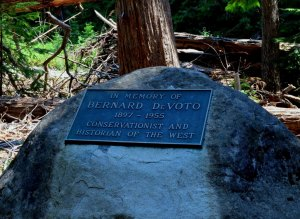 Bernard DeVoto's ashes are scattered in the midst of the grove (Dan Magurshak photo).