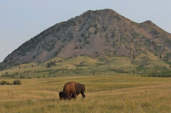 Bear Butte has been a sacred site for the people of many Indian tribes for more than 4,000 years (Bob Sessions photo).