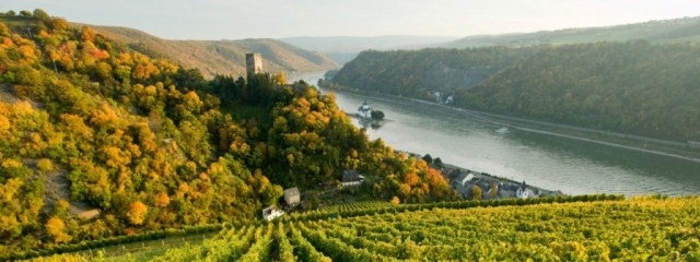 The Rhine Valley near Bingen, Germany, is designated as a UNESCO World Heritage Site (photo by Romantic Rhine Tourism)
