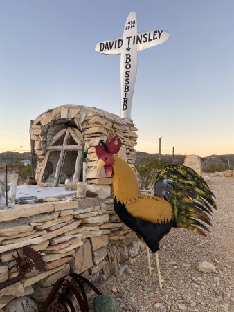 Chicken perched on grave in Terlingua, Texas, cemetery
