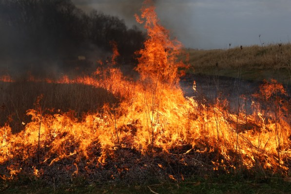 prairie burn, grass fire