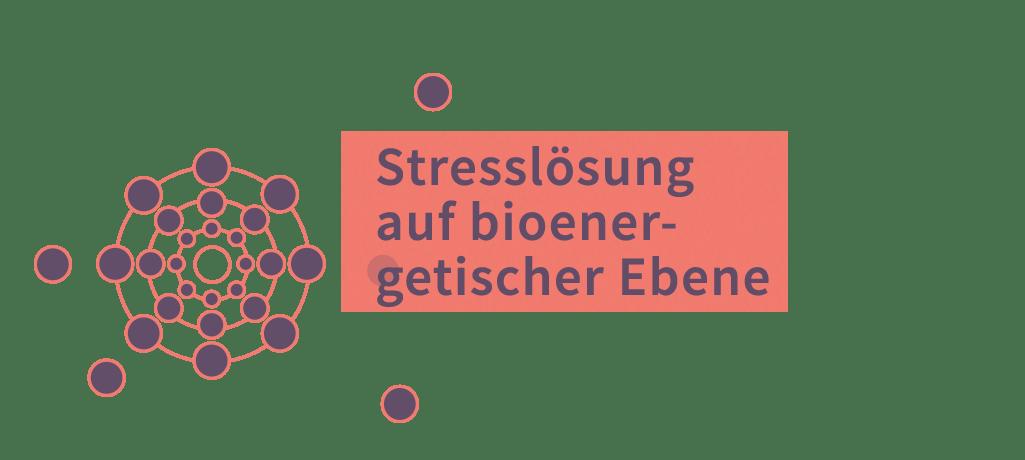 Stresslösung auf bioenergetischer Ebene
