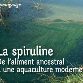 la spiruline de l'aliment ancestral à une aquaculture moderne