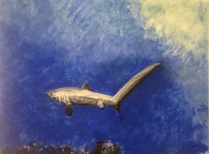 Tresher Shark Painting