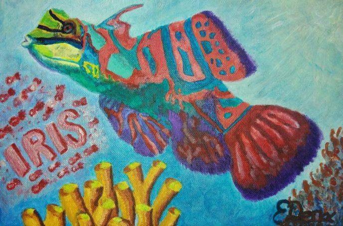 Painting Mandarinfish