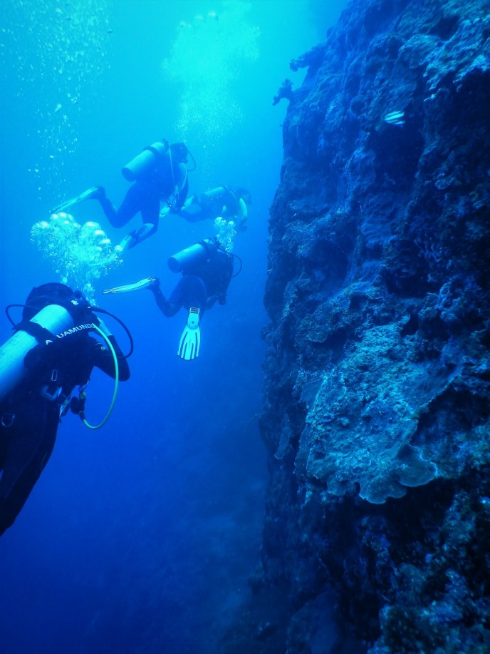 Scuba diving next to a wall, Apo Island