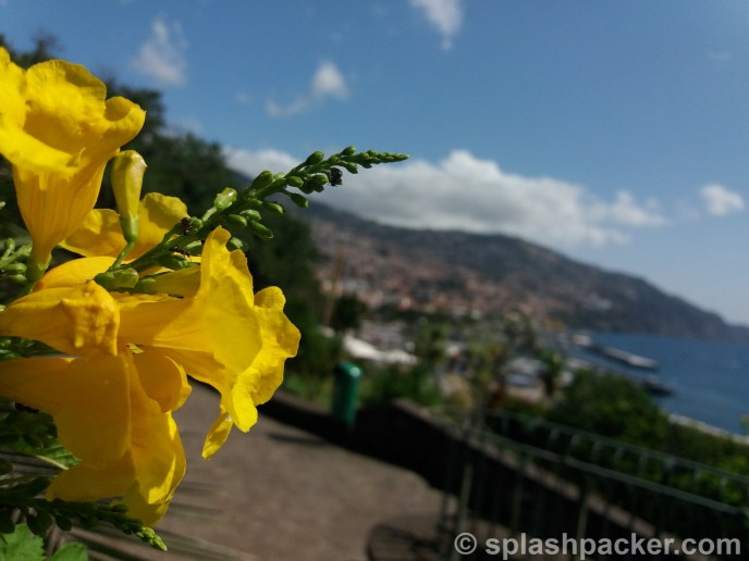 Travel during coronavirus: Funchal on Madeira Island