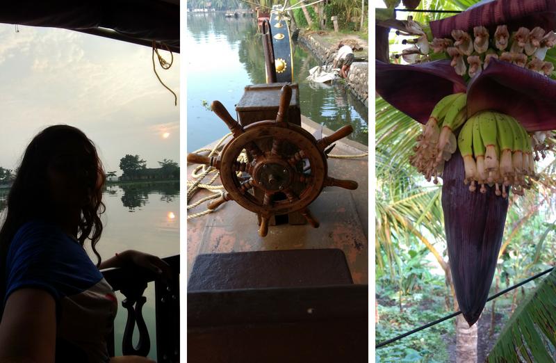sunrise-houseboat-kerala
