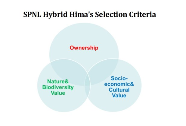 HIMA Presentation Pic 3