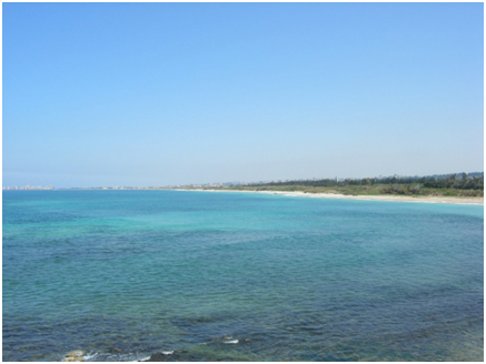 SPNL are rewarded for conserving the coastline at Hima Qoleilih, southern Lebanon, whilst supporting local people.