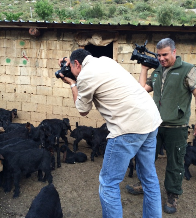 Short documentary on grazing pic 5