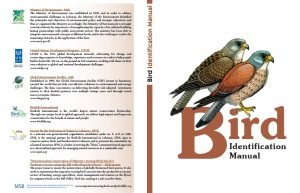 Bird Identification Manual