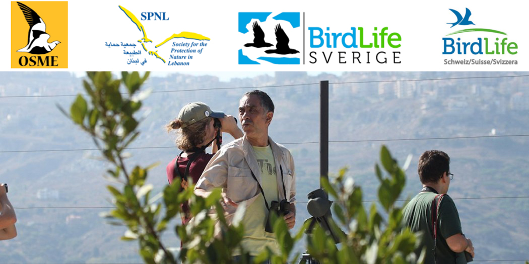 CALL FOR VOLUNTEERING COUNTERS & TRAINERS FOR RAPTOR MIGRATION COUNT LEBANON SEPTEMBER 2019