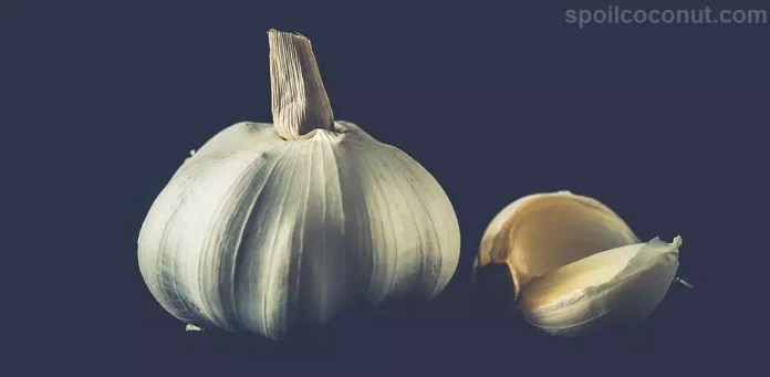 Daily 2 Cloves Garlic, 33 Health Benefits