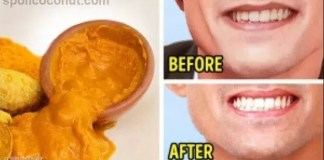 The Nine Foods That Will Whiten Your Teeth