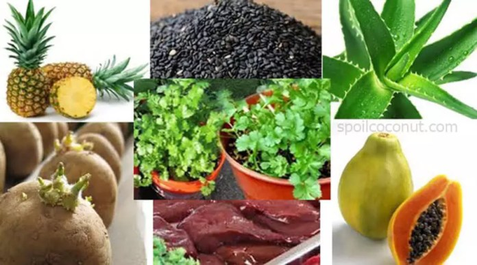 Which Foods Are Responsible For Abortion