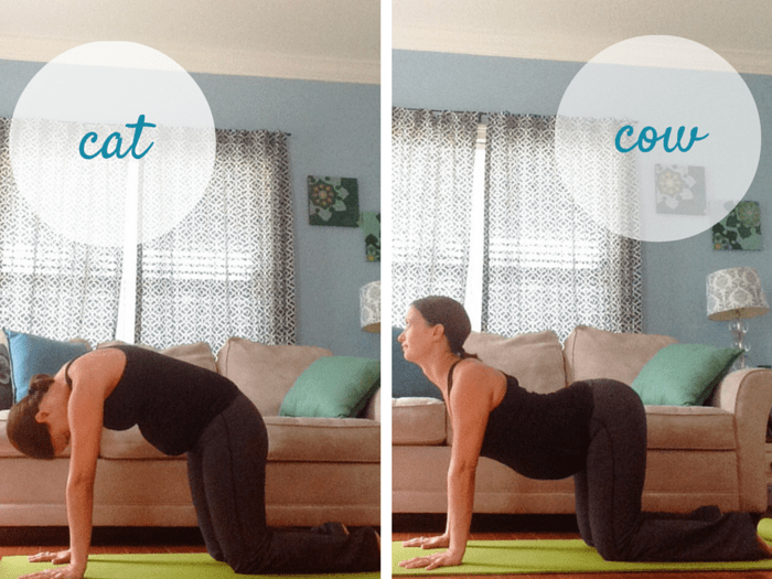 Cat and Cow Poses | Best Yoga Poses for the Second Trimester | SpoiledYogi.com