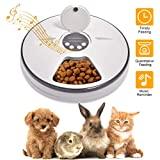Ciotola per cani e gatti distributore automatico