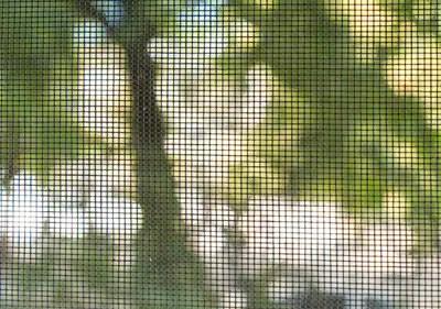 window screens