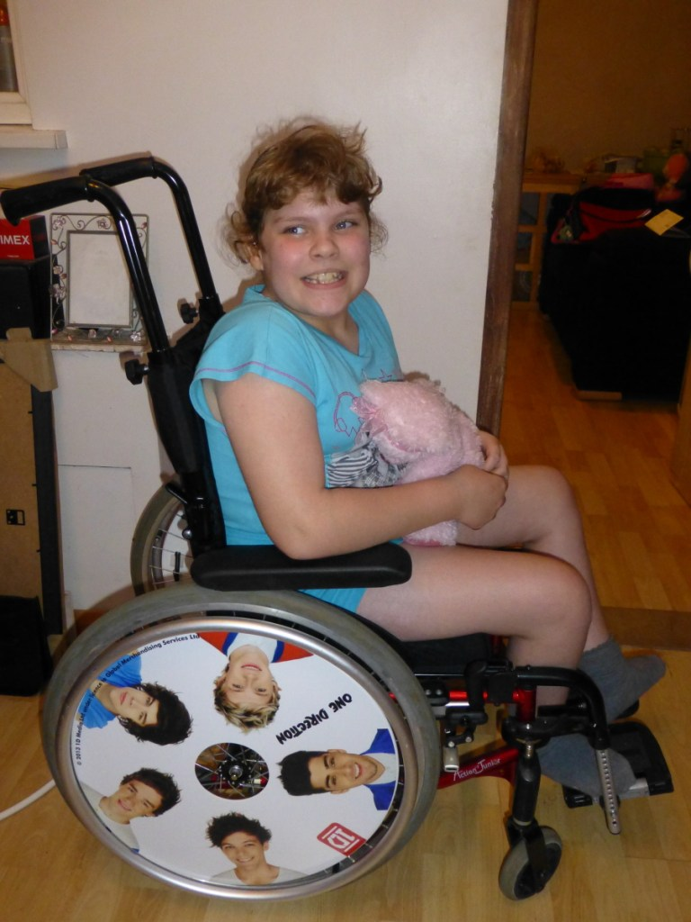 1 Direction Wheelchair Wheel Covers SpokeGuards