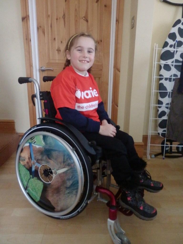 Horse Wheelchair Wheel Covers SpokeGuards