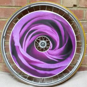 Purple Rose SpokeGuards