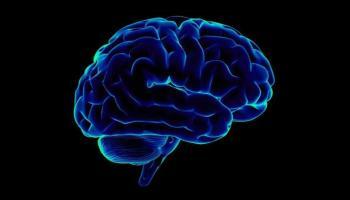 Microchip that can beat the Human brain power