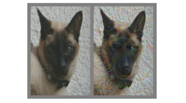 Adversarial images Dog