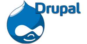 The Top Benefits of Using Drupal Hosting