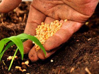 Agricoltura Sociale, prima Festa dell'Umbra a Spoleto