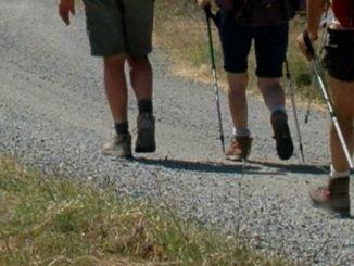 Passeggiata lungo la Spoleto-Norcia, boom di iscrizioni per il Pediciufciuf