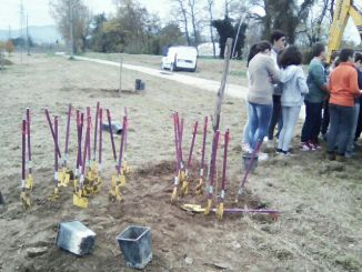Spoleto, i ragazzi delle scuole piantano 58 nuovi alberi
