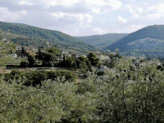 Giornate d'autunno del FAI: l'iniziativa di Spoleto. Domenica 17 ottobredalle ore 10 passeggiata lungo il Sentiero degli Ulivi