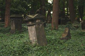 Eliasfriedhof in Dresden (3)
