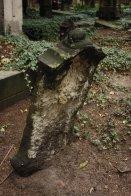 Eliasfriedhof in Dresden (8)
