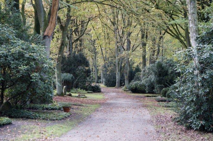 Waldfriedhof Lauheide