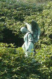 Ein Engel verloren im Grün der Natur.