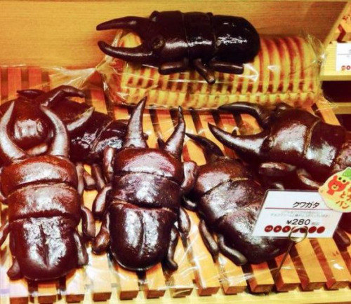 Beetle shaped bread
