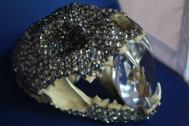 Jeweled Bobcat Skull