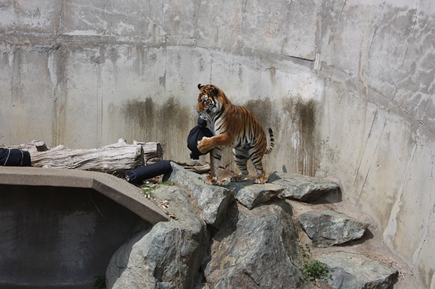 zoo-jeans-distressed-denim (5)